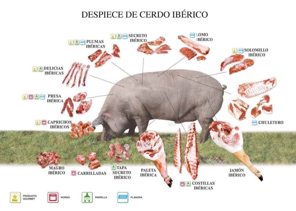 mesa-habla-partes-carnes-cerdo