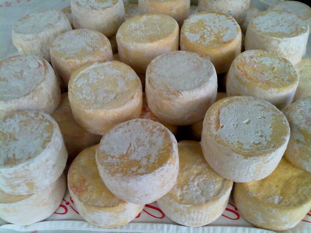 mesa-habla-queso-beyos-asturias