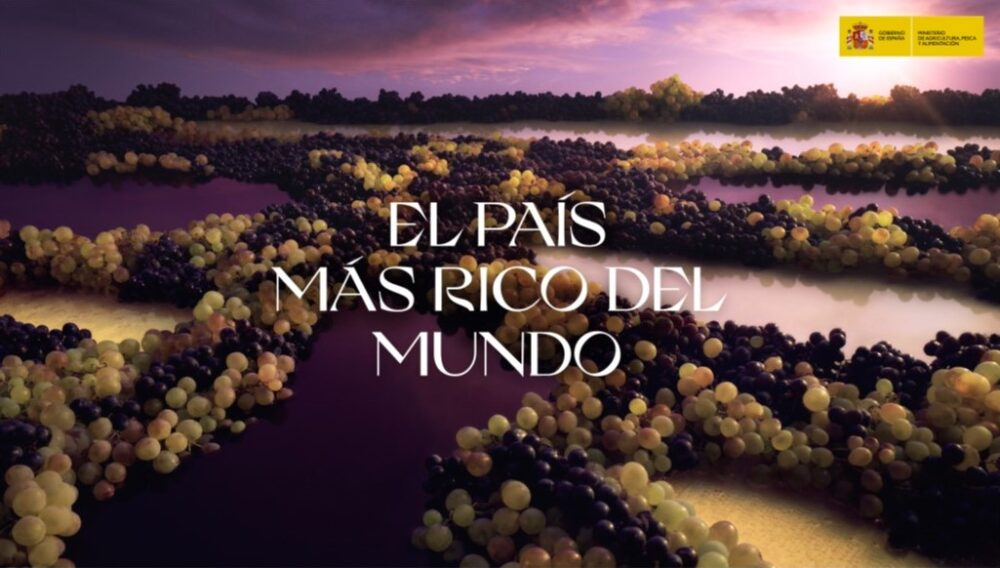 mesa-habla-alimentos-espana-vinos