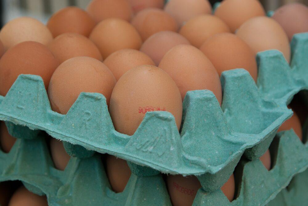 mesa-habla-huevos 10