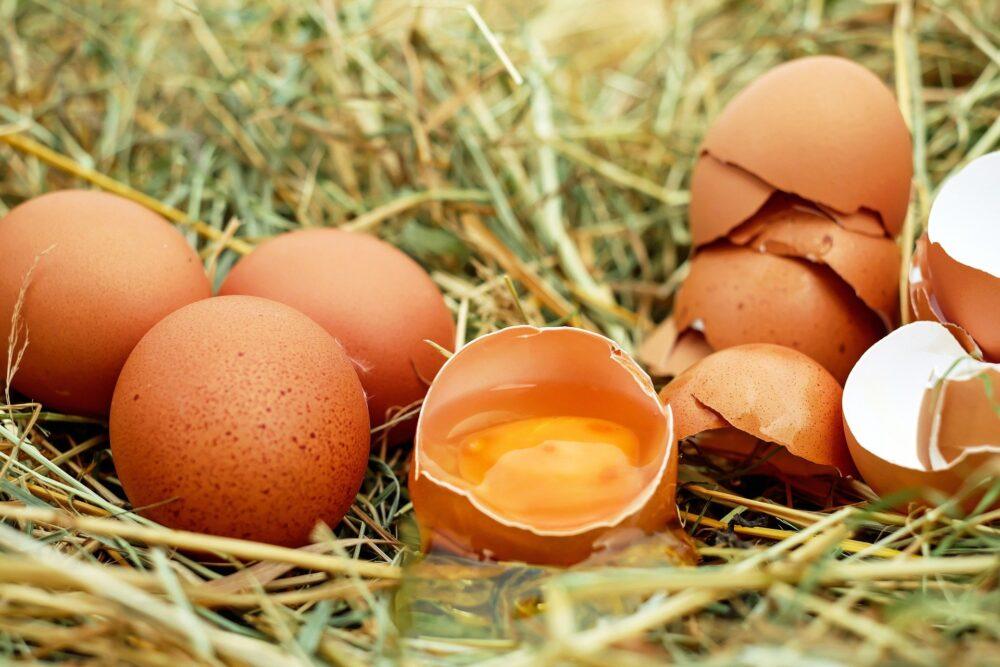 mesa-habla-huevos-portada